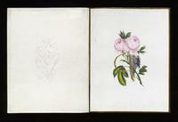 1850_Borgnini.jpg